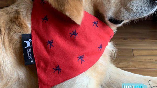 PoochMate Mandarin Bandana For Dogs - Red & Navy