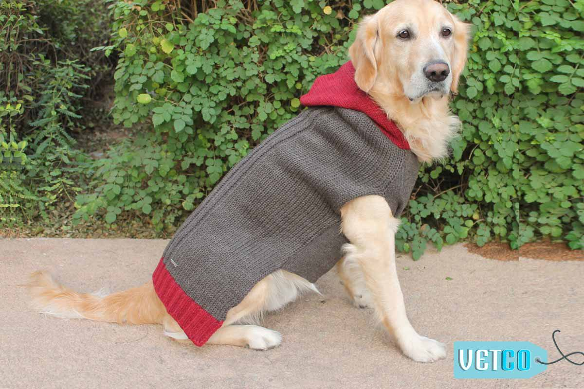 PoochMate Milano Hooded Dog Sweater - Sawdust
