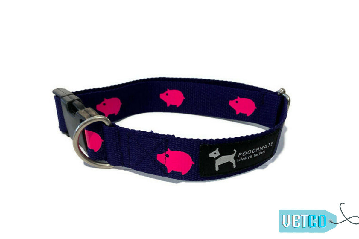 PoochMate Navy Babe Cotton Webbing Dog Collar