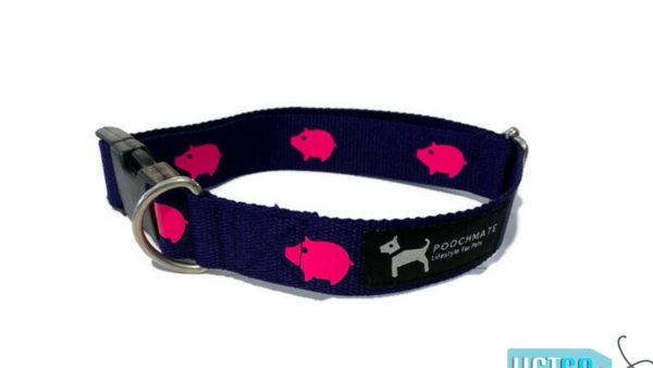 PoochMate Navy Babe Cotton Webbing Dog Collar