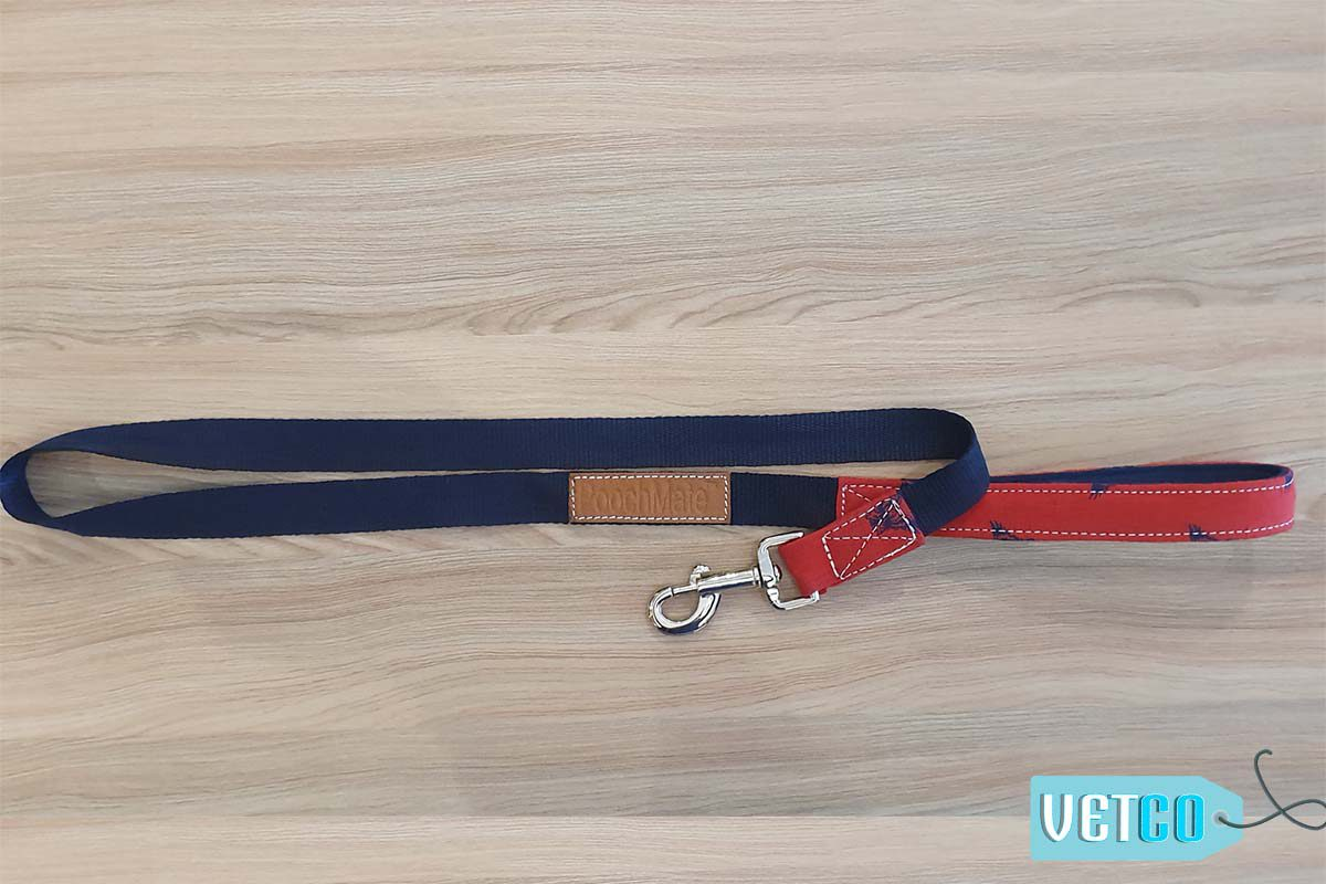 PoochMate Red Chirpy Dog Leash with Padded Handle