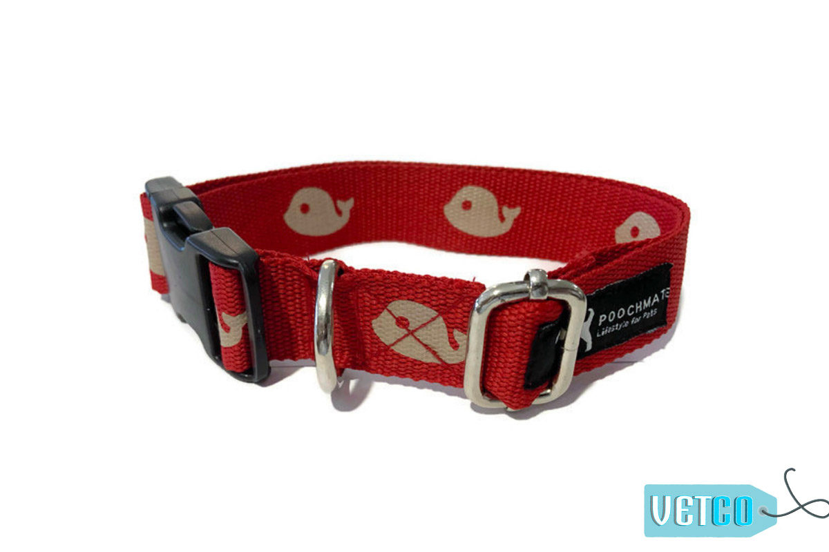 PoochMate Red Whale Done Cotton Webbing Dog Collar