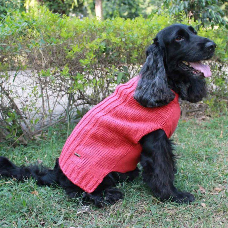 PoochaMate Snug Bug Dog Sweater – Rose 1