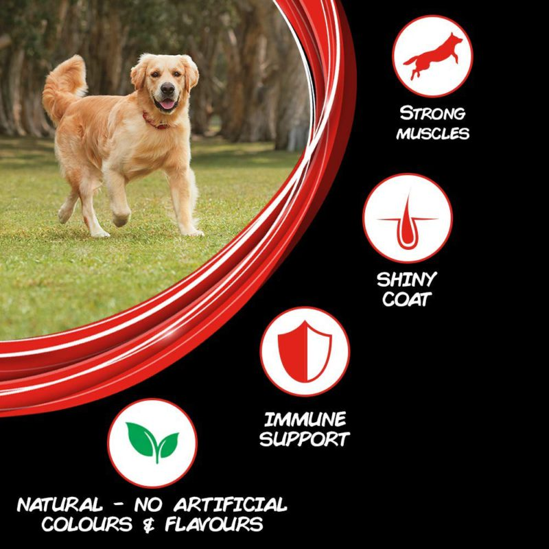 Purina Supercoat Adult Dry Dog Food (All Breeds & Sizes)