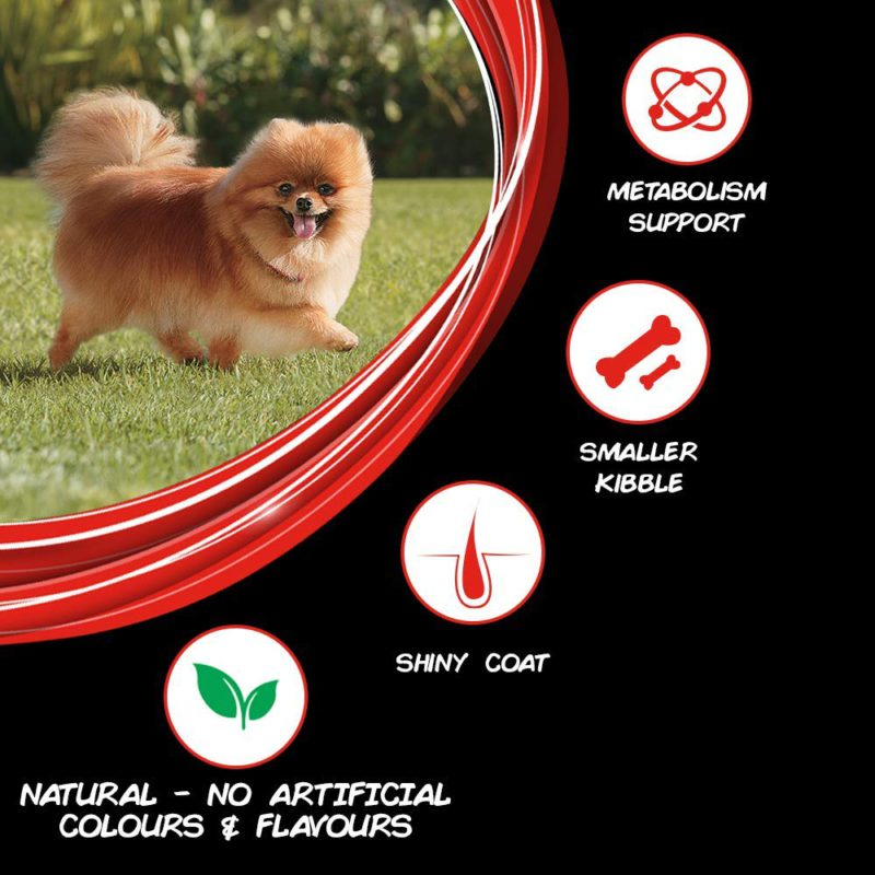 Purina Supercoat Adult Dry Dog Food (Small Breeds)