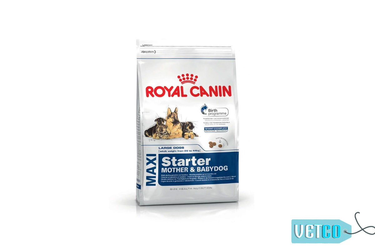 Royal Canin Maxi Starter & Babydog Dry Dog Food (Large Breeds)