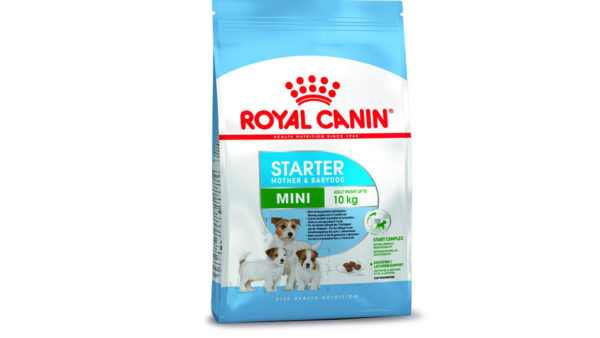 Royal Canin Mini Starter & Babydog Dry Dog Food (Small Breeds)