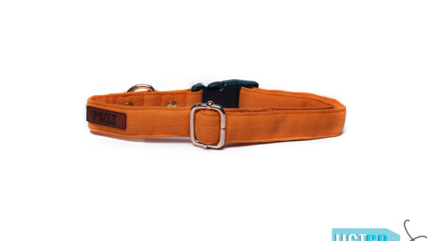 Mutt Ofcourse Water & Dirt Repellant Gooseberry Dog Collar