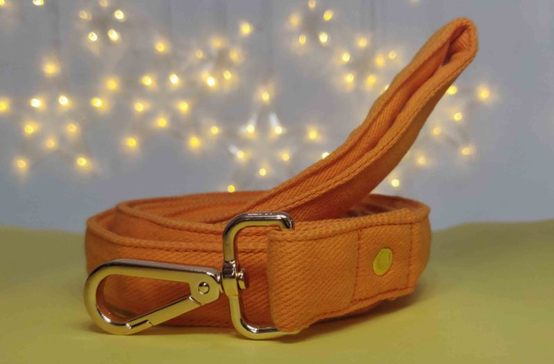 Mutt Ofcourse Water & Dirt Resistant Gooseberry Dog Leash