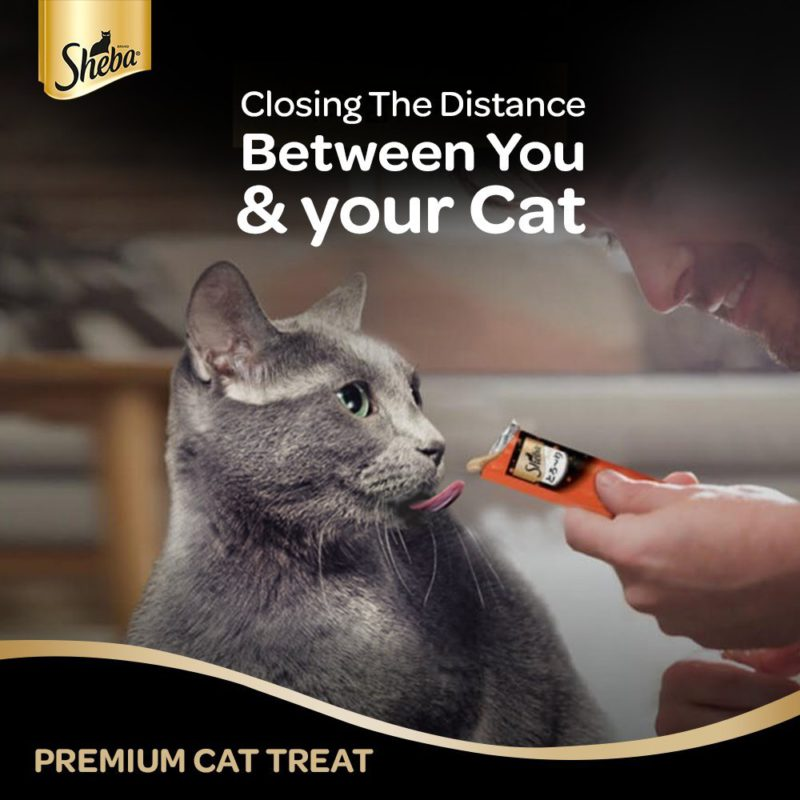 Sheba Melty Cat Treat