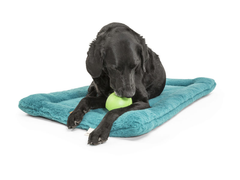West Paw Zogoflex Echo Rando Dog Toy