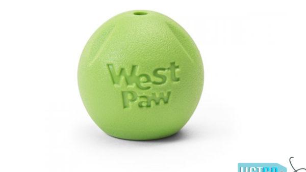 West Paw Zogoflex Echo Rando Dog Toy - Green
