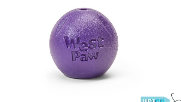 West Paw Zogoflex Echo Rando Dog Toy - Purple