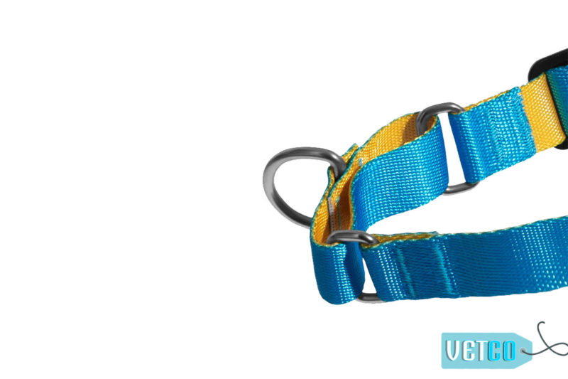 Zee.Dog Aziza Soft-Walk Dog Harness
