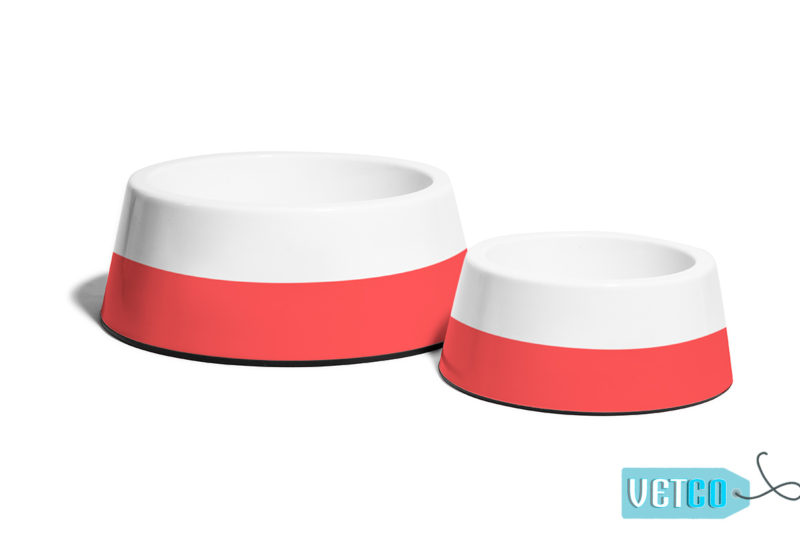 Zee Dog Coral Non-Slip Dog & Cat Bowl 1