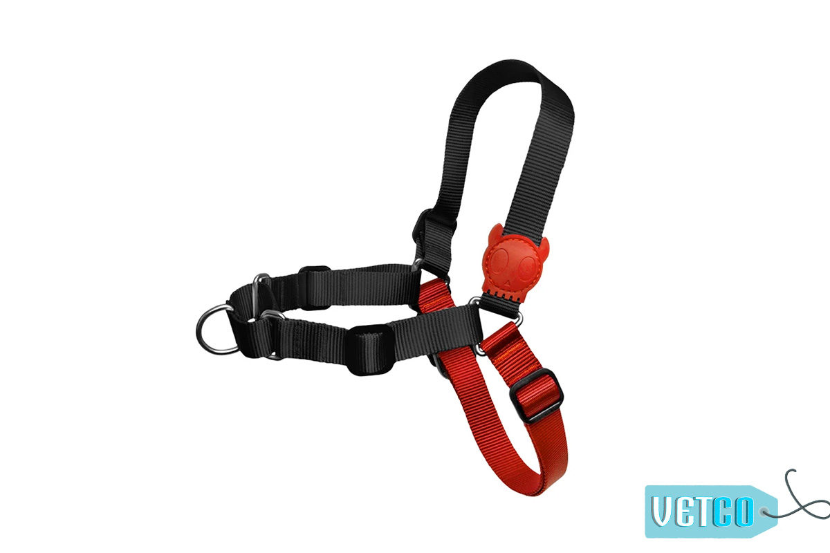 Zee.Dog Fatboy Soft-Walk Dog Harness