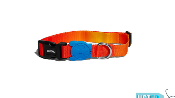 Zee Dog Solaris Dog Collar