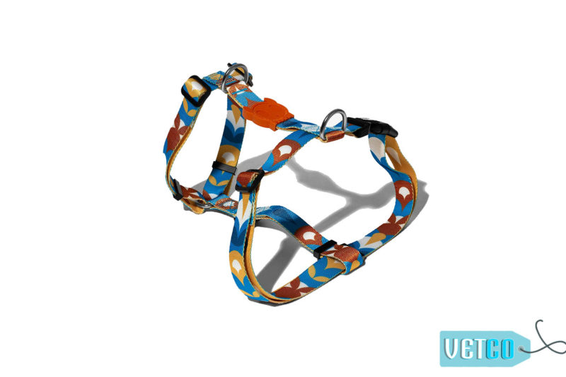 Zee Dog Yansun Dog H-Harness