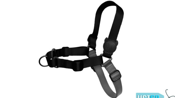 Zee.Dog Gotham Soft-Walk Dog Harness