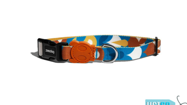 Zee Dog Yansun Dog Collar