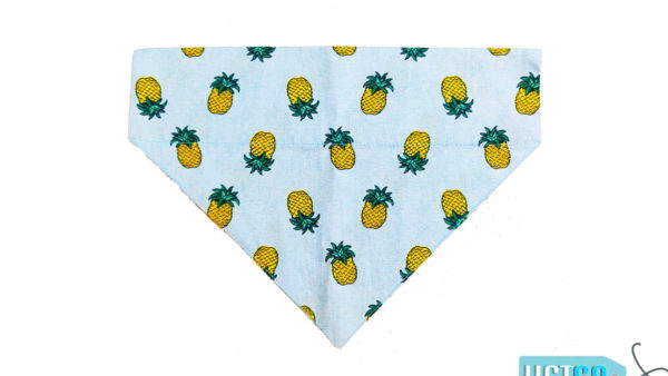 FTFK Pineapple Beach Wear Dog & Cat Bandana