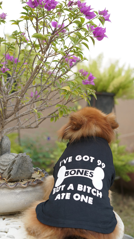 Impawsters 99 Bones Tee for Dogs
