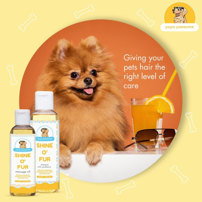 Papa Pawsome Shine O' Fur Shampoo with Conditioner for Dog, 250 ml