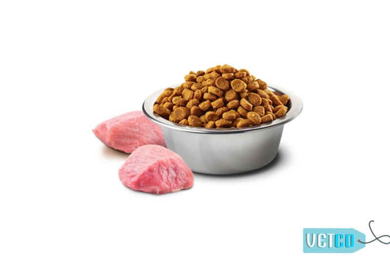 Farmina N&D Pumpkin Grain Free Chicken & Pomegranate Adult Dog Food (Mini & Small Breeds)