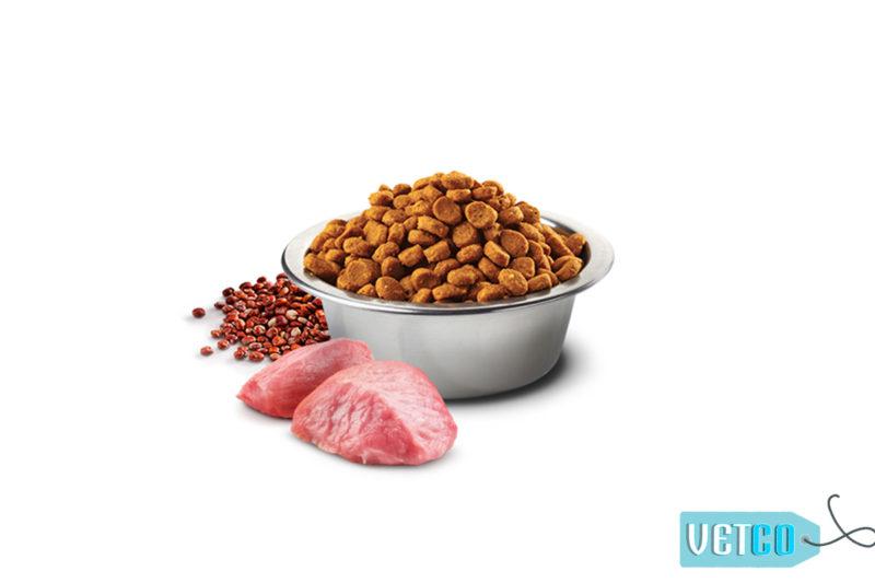 Farmina N&D Quinoa Digestion Grain Free Lamb Adult Dog Food (All Breeds)