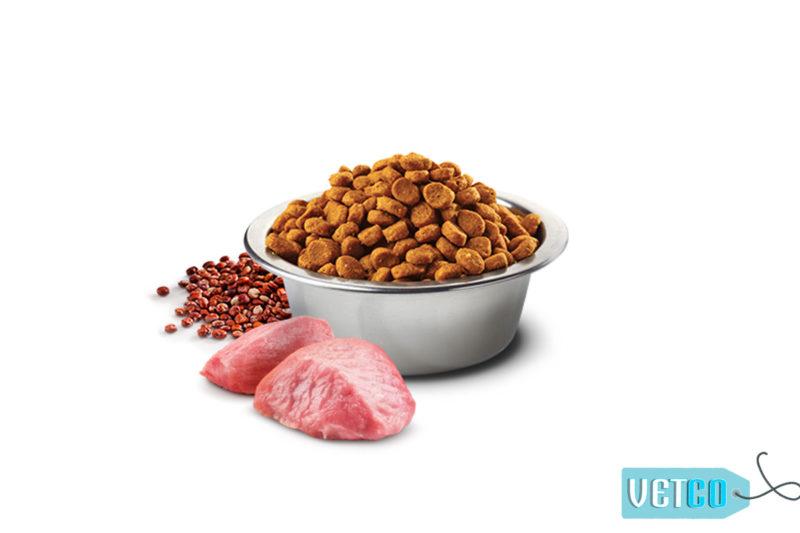Farmina N&D Quinoa Weight Management Grain Free Lamb Adult Dog Food (All Breeds)