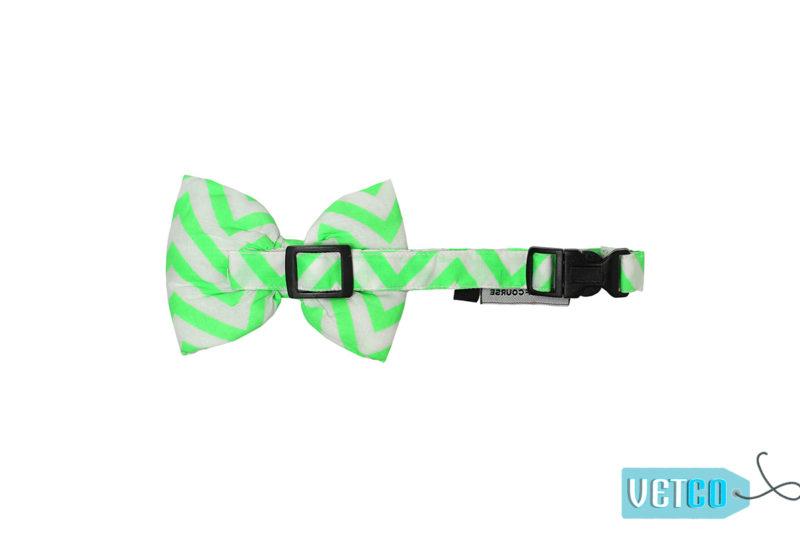 Mutt Ofcourse Chevron Green Bow Tie for Dogs
