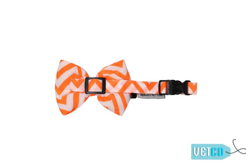 Mutt Ofcourse Chevron Orange Bow Tie for Dogs