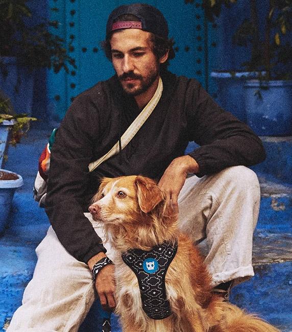 Zee Dog Mahleb Air Mesh Plus Dog Harness