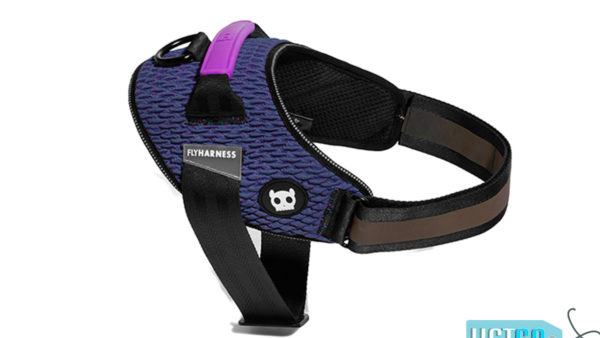 Zee Dog Wicked Fly Harness