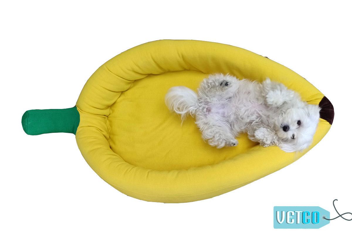 Barks n Wags Banana Dog & Cat Bed
