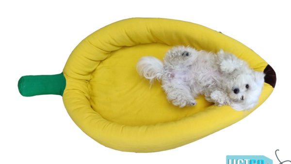 Barks n Wags Banana Dog & Cat Bed