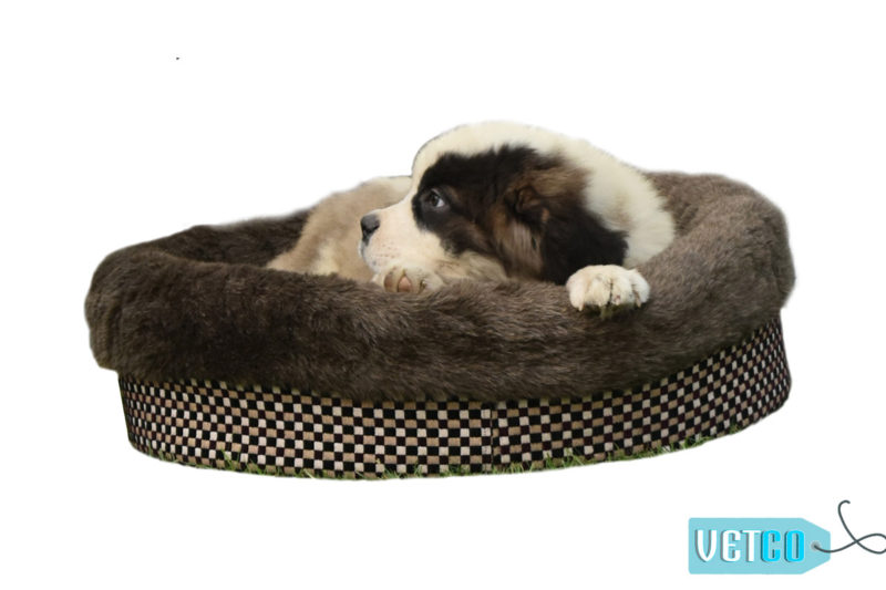 Barks n Wags Chocolate Donut Snuggle Bed