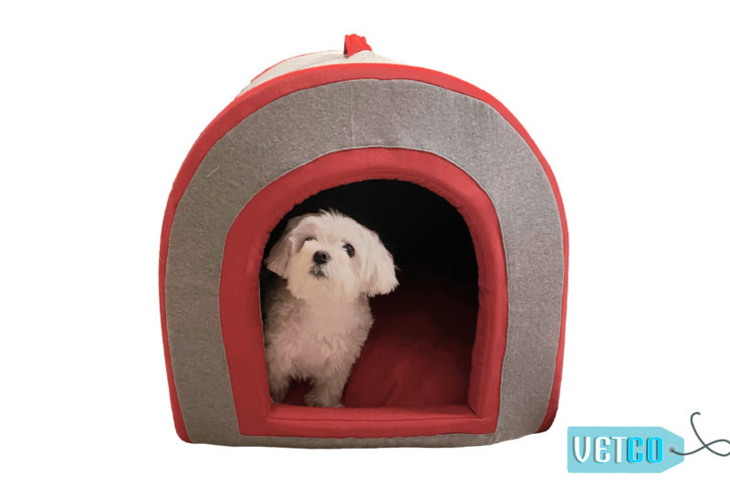 Barks n Wags Doggy Den Covered Cat & Dog Be