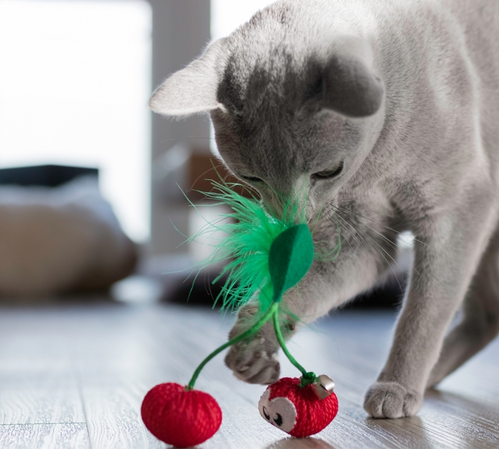 Petstages Dental Cherries Cat Toy