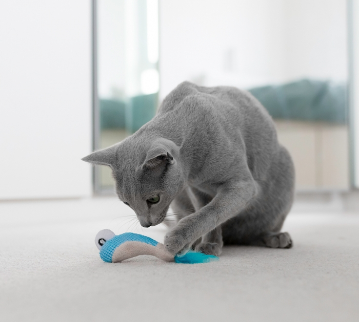 Petstages Dental Shrimpies Cat Toy (Pack of 2)