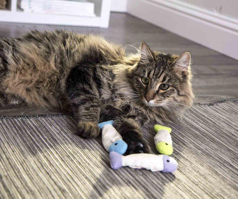 SmartyKat Fish Flop Crinkle Catnip Cat Toys (Set of 3)