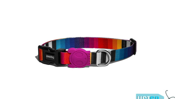 ZeeDog Prizma Dog Collar