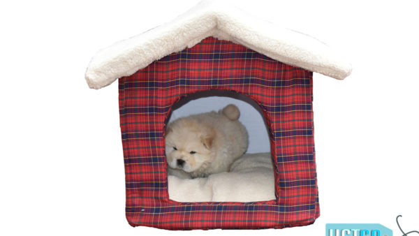 Barks n Wags Red Plaid Christmas Hut Dog & Cat Bed