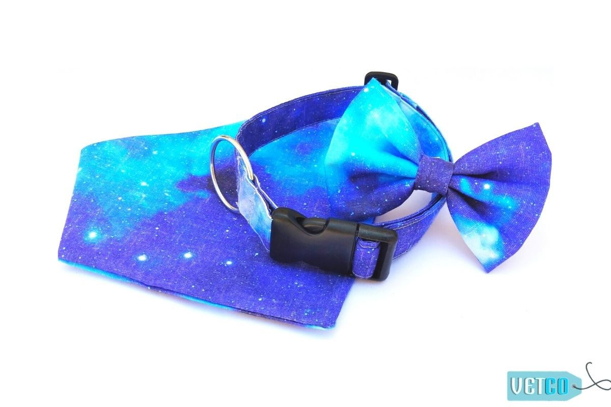 Hazel&Co Galaxy Accessories Set for Dogs