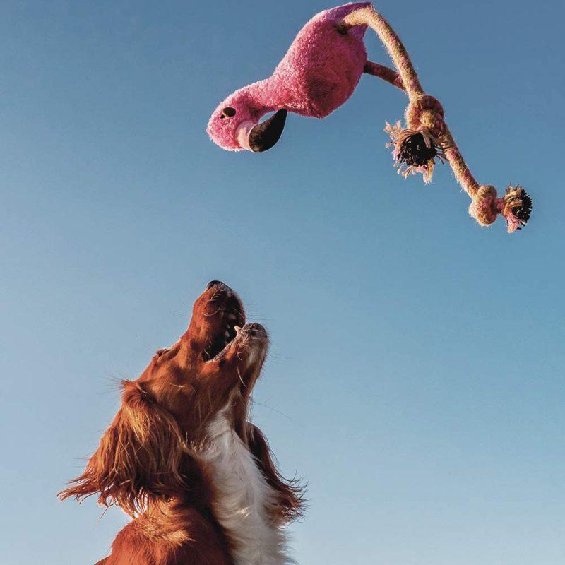 Beco Pets Dual Material Hemp Rope Flamingo Dog Toy