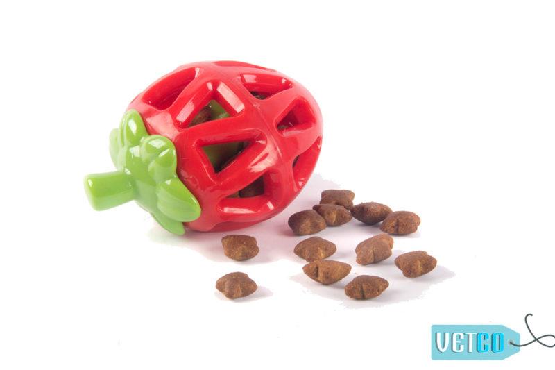 FOFOS Fruity-Bites Treat Dispensing Strawberry Dog Toy