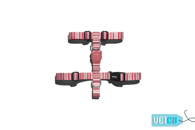 Zee.Dog Peppermint Dog H-Harness
