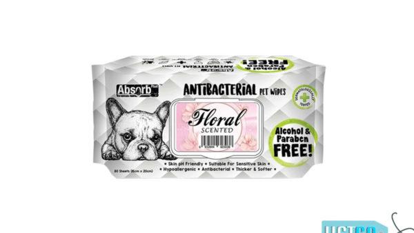 Absorb Plus Floral Antibacterial Pet Wipes, 80 Count