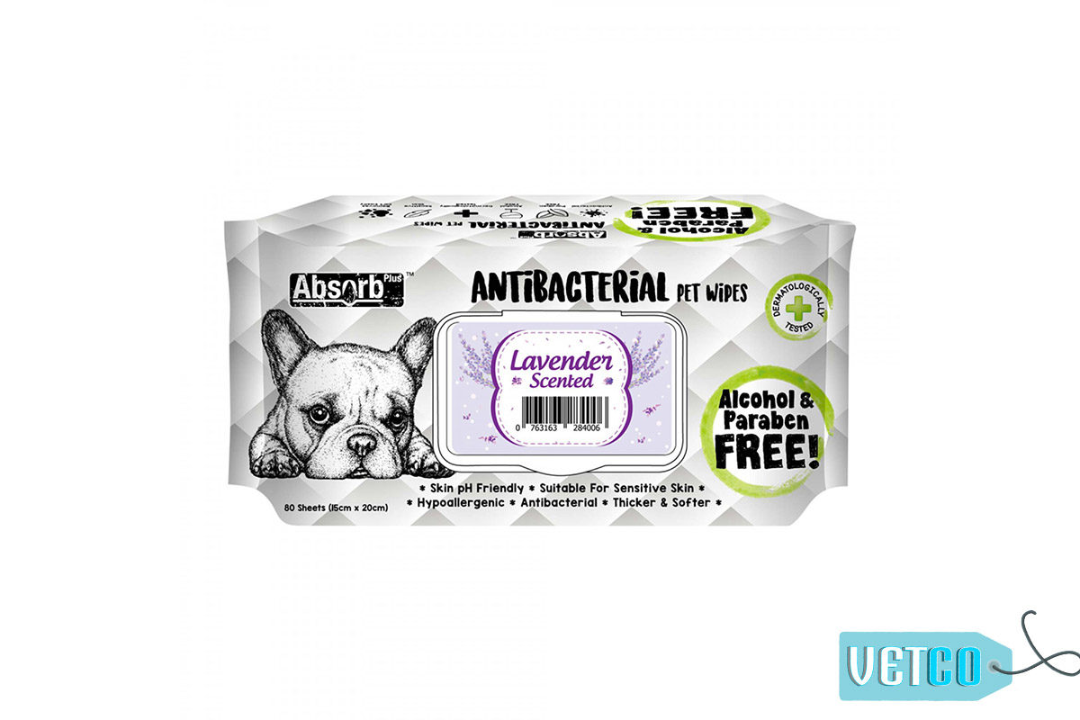 Absorb Plus Lavender Antibacterial Pet Wipes, 80 Count
