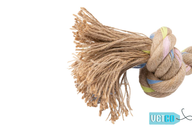 Beco Pets Rope Jungle Double Knot Dog Toy